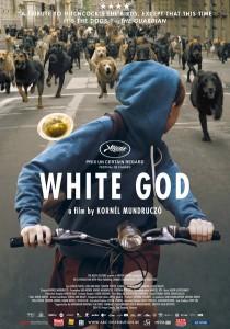 white god affiche