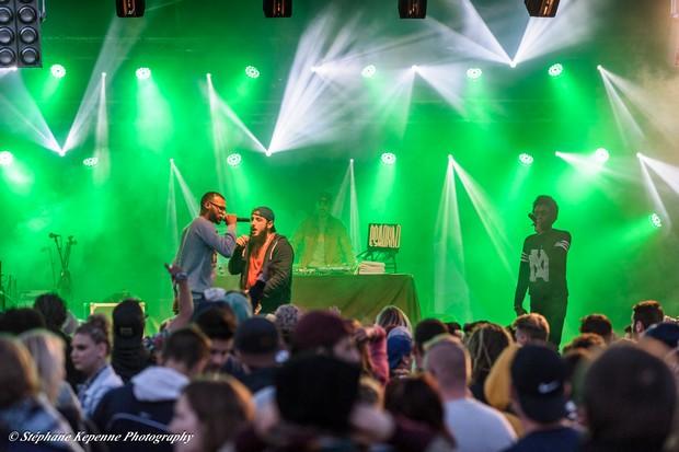 Bluebird festival 2015