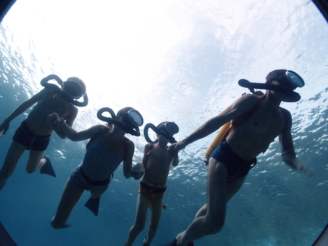 The Odyssey, an unbelievable immersion within the lifetime of Cousteau • Suricate Journal