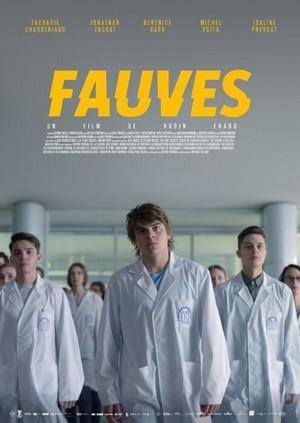 Concours «Fauves»
