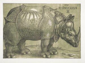 Albrecht Dürer, Le Rhinocéros, gravure sur bois et bloc de couleur vert olive ajouté au XVIIe siècle, septième réédition de la gravure sur bois réalisée en 1515. KBR – Cabinet des estampes, S.I 13946