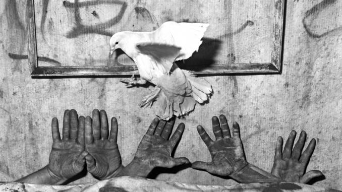 Five hands, 2006 © Roger Ballen