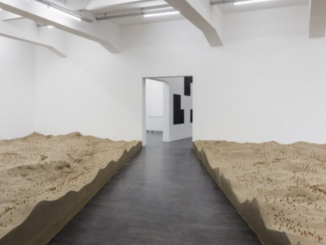 Courtesy the artist; Sadie Coles HQ, London; kurimanzutto, Mexico City, New York; Galleria Franco Noero, Turin; WIELS-Contemporary Art Centre, Brussels; Esther Schipper, Berlin Photo © Andrea Rossetti