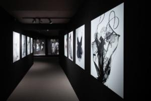 Vue de l'exposition Beautiful lace et Carine Gilson, 2019. © Musée Mode et Dentelle, Bruxelles.