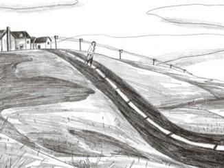 Extrait de la BD « Baume du Tigre » de Lucie Quéméner (Delcourt, 2020)